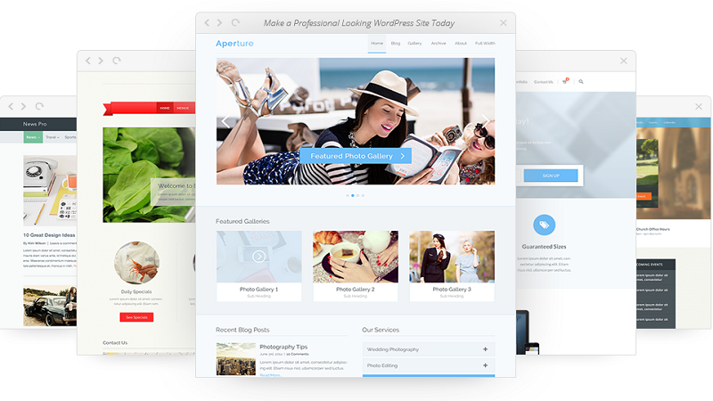 Important Factors to Select a WordPress Theme